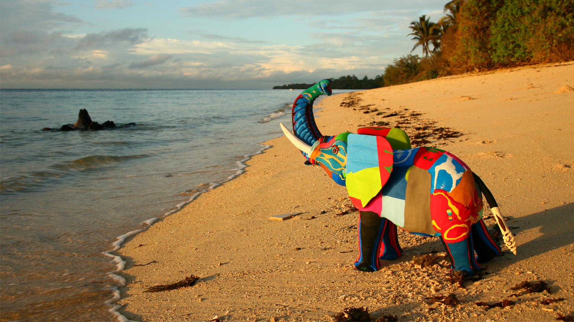 Πολύχρωμα νέα- Σαγιονάρα-Τέχνη