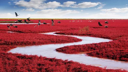Πολύχρωμος Πλανήτης! Τα 4 πιο εντυπωσιακά φυσικά τοπία